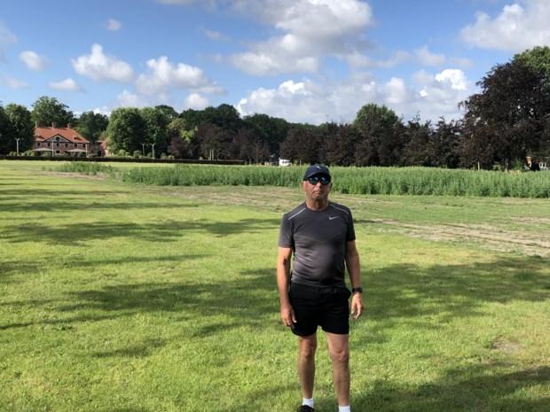 Droogte en verbod op pesticiden: daarom domineert het onkruid op de 'prairie' voor de Hemelhoeve