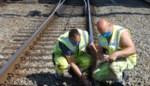 Treinverkeer tussen Hasselt en Luik negen dagen onderbroken