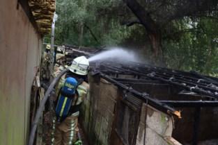 Grote stal voor dieren gaat helemaal in de vlammen op