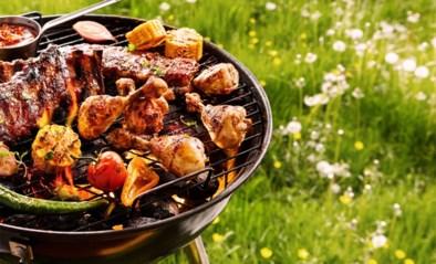 Barbecueën voor dummies: welk toestel geeft het beste resultaat en hoe gaar je het perfecte stukje vlees?