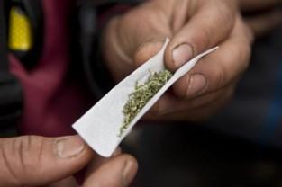 """Politie vindt halve kilogram wiet: """"Man rookte tot twintig joints per dag"""""""