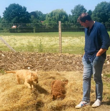 Honden kunnen naar hartenlust snuffelen op nieuwe snuffelweide