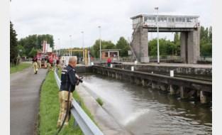 Vissen happen naar zuurstof aan Denderbellesluis