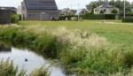 Buurtplein Merelput wordt ruim rust- en recreatiepunt