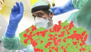 Kan lokaal bestuur het verschil maken in aantal besmettingen? En in welke gemeentes is het nog opletten?