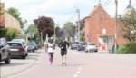 Reinaert had streken... maar hier is het langverwachte filmpje van 'Vive la vie'!
