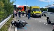 Bromfietser zwaargewond in Genk