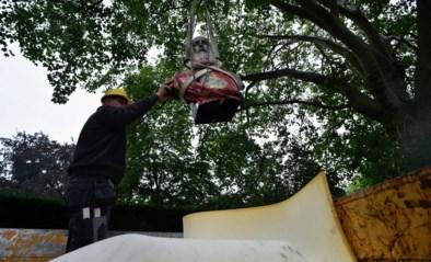 """Vlaams Belang """"herstelt"""" Congomonument in Jubelpark: """"Men zwijgt over de misdaden die vandaag nog steeds aan de gang zijn"""""""