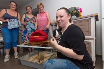 Gezocht: inzamelplaatsen voor dierenvoedselbank