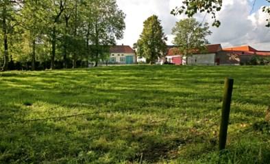 De mooiste wandelroutes van België: waar 'gedresseerde egels' werden losgelaten en de tijd bleef stille staan