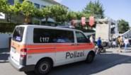 Dierenverzorgster (55) sterft na een tijgeraanval in de dierentuin van Zürich, klein meisje zou alles gezien hebben