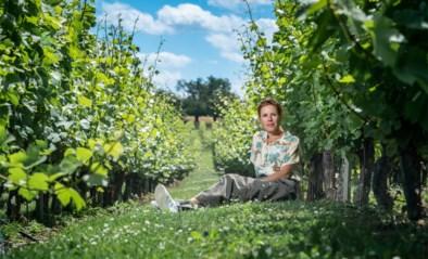 """'Thuis'-actrice Katrien De Ruysscher: """"Ik vond die lockdown heel rustgevend"""""""