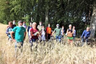 """Groen lust bouwplannen meerderheid niet:  """"Bestuur wil zes hectare landbouwgrond volbouwen"""""""