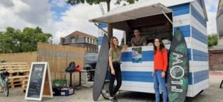 """Drie jongeren vinden de vakantiejob van hun leven: """"Een pop-up zomerbar in tropische sferen"""""""