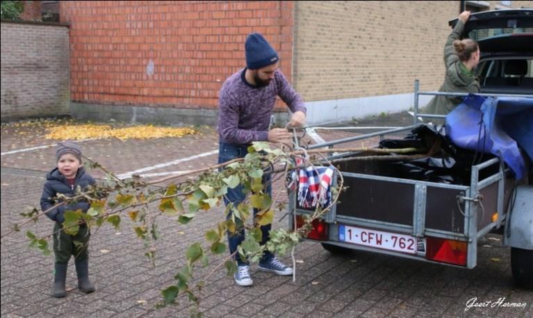 Elk een boom of drie struiken: gemeente trakteert opnieuw op groen