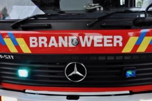 Gezin van vier gered bij appartementsbrand