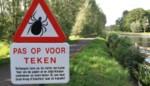 Tekenplaag langs Moervaart en de Durme: borden moeten wandelaars waarschuwen