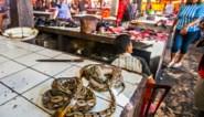 WWF vraagt einde van handel en consumptie van wilde dieren in open brief