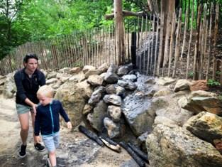 Pyromaan vernielt houten brug Lieteberg