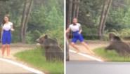 Vrouw tracht om akelig dicht te poseren bij wilde beer en bekoopt dat bijna met haar leven