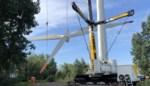 """Een van hoogste windmolens van ons land afgebroken: """"Gaan een nog grotere bouwen"""""""