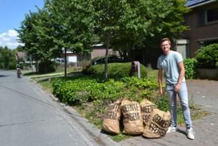 Gemeente blijft driemaal per jaar gratis tuin- en snoeiafval inzamelen