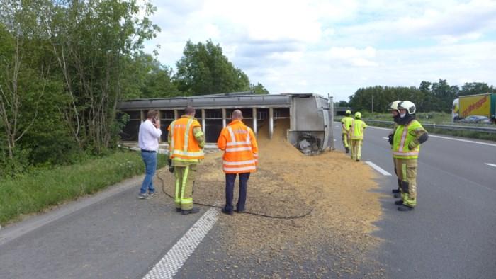 Slecht geladen vrachtwagen met veevoer kantelt en doet boom sneuvelen