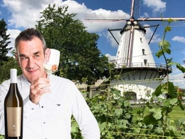 Het ontdekken waard: onze wijnkenner zoekt de leukste wijnadresjes in eigen land en begint in Antwerpen