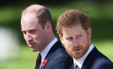 Zo verdelen William en Harry erfenis Diana