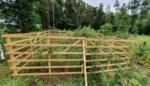Wildrasters beschermen jonge planten tegen dieren