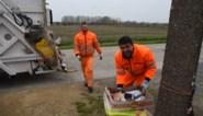 Peter De Leeuw nieuwe directeur intercommunale Verko
