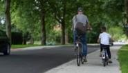 """Nieuwe straat klaar na 2,5 jaar, maar zonder parkeerplaatsen en voetpaden: """"Terechte keuze"""""""
