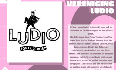 Kies zelf de publieksprijs voor jouw cultuurlaureaat: Toneelvereniging Ludio