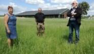 Dertien is echt ongeluksgetal voor deze vereniging: Hele dorp mist de Dolle Landbouwdagen