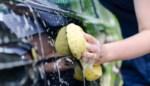Wassen zonder krassen: zo laat je je auto blinken als nieuw en deze producten gebruik je best (niet)