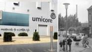 Zieke kinderen, dode paarden en prei van lood: de loodzware geschiedenis van de Umicore-fabriek in Hoboken