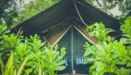 """""""Rits je slaapzak open en kies een warme matras"""": tips voor wie zich deze zomer voor het eerst aan kamperen waagt"""
