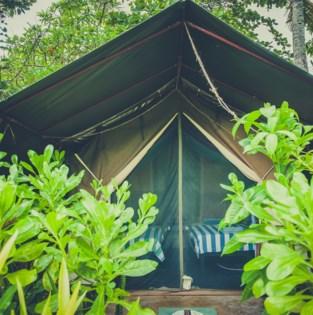 Tips voor wie zich deze zomer voor het eerst aan kamperen waagt