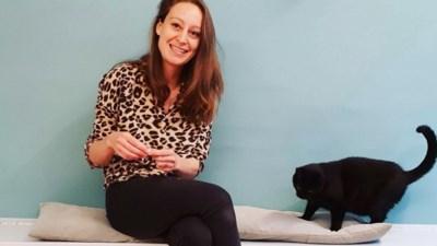 """Gents café bezorgde al honderd katten nieuwe thuis: """"Soms is het lastig om ze af te geven"""""""