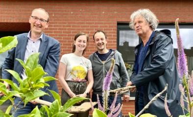 Leiedal maakt 10.000 euro vrij voor ontharding (en beplanting) tuintjes