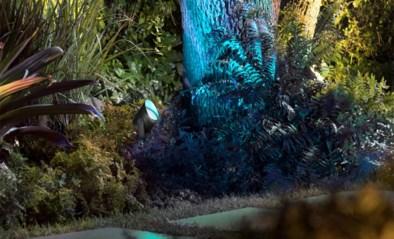 Hul je tuin in de gekste kleuren met de slimme lampen van Philips, al schildert de prijs een minder mooi plaatje