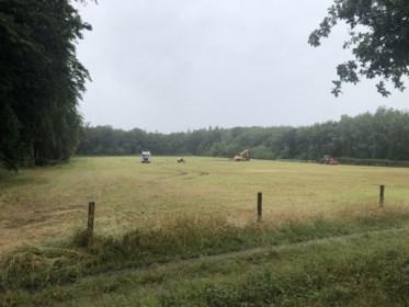 Wingene krijgt er ruim 1 hectare bos bij