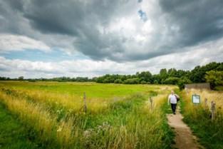 Provincie Antwerpen lanceert 'GroenZoeker' om recreanten beter te spreiden over groendomeinen
