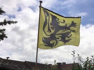 Vlaams Belang deelt vlaggen en speelkaarten uit