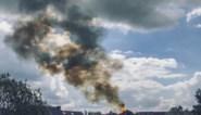 Schutterstoren in Wetteren vat vuur: grote schade aan verschillende omliggende gebouwen