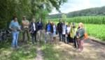 Plan Steenuil zet bos- en natuuruitbreiding de komende vijf jaar voorop