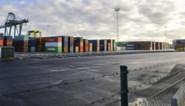 Zeebrugge boekt groei, ondanks klappen voor autotrafiek