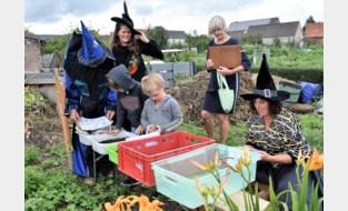 Speurend naar verdwenen toverstokjes leren kinderen over tuinieren