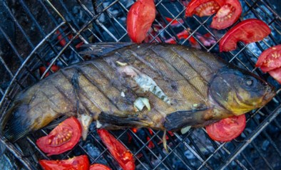 Hoe voorkom je dat vis uitdroogt op de barbecue? Chef-kok Seppe Nobels geeft raad