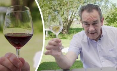 Hoe krijgen rode wijn, witte wijn en rosé hun kleur? Alain Bloeykens legt het je haarfijn uit